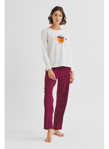 Penti Activitea Pijama Takımı Renkli
